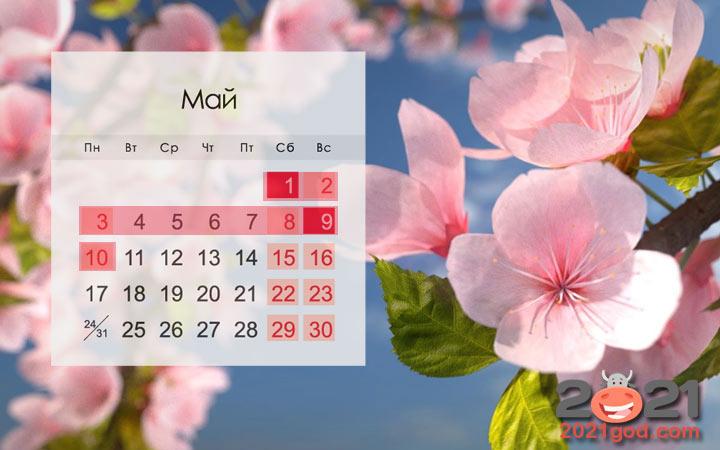 Майские праздники в России в 2021 году