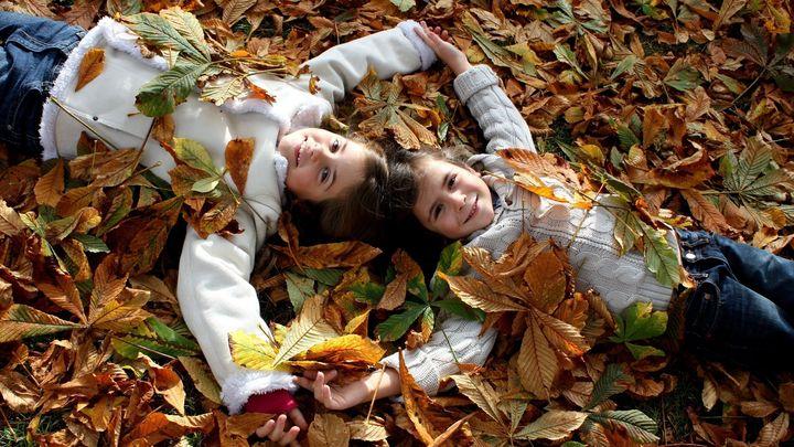 Дети играют в листве