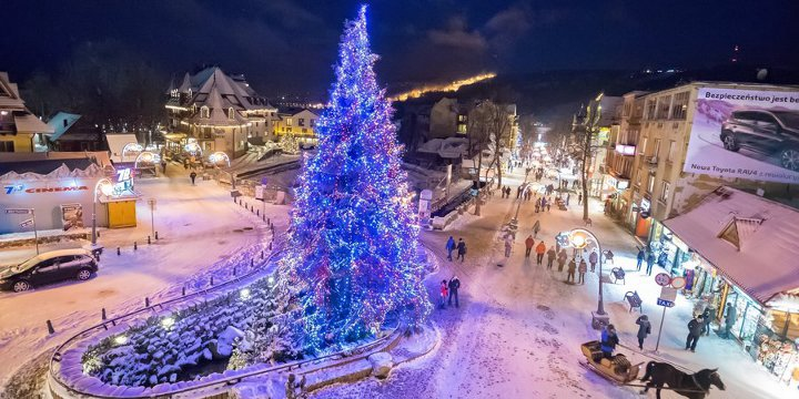 новогодняя елка на площади