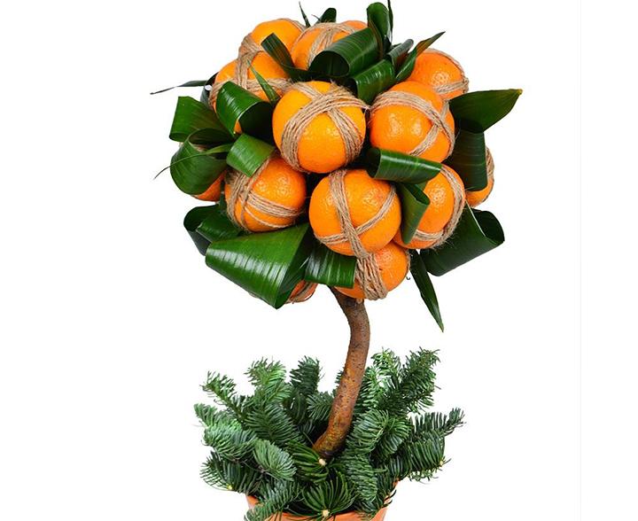 Мастер-класс по изготовлению новогоднего топиария из мандаринов