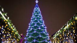 елка на центральной площади воронежа