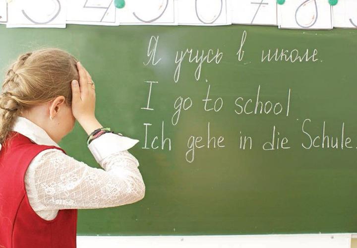 Второй иностранный язык в школе - нужен ли