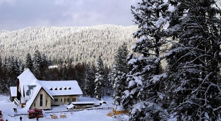 Бакуриани зимой