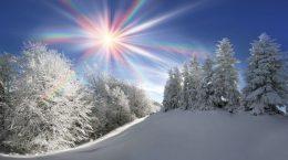 солнце над заснеженным подлеском