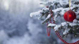 зимняя елка с елочными украшениями