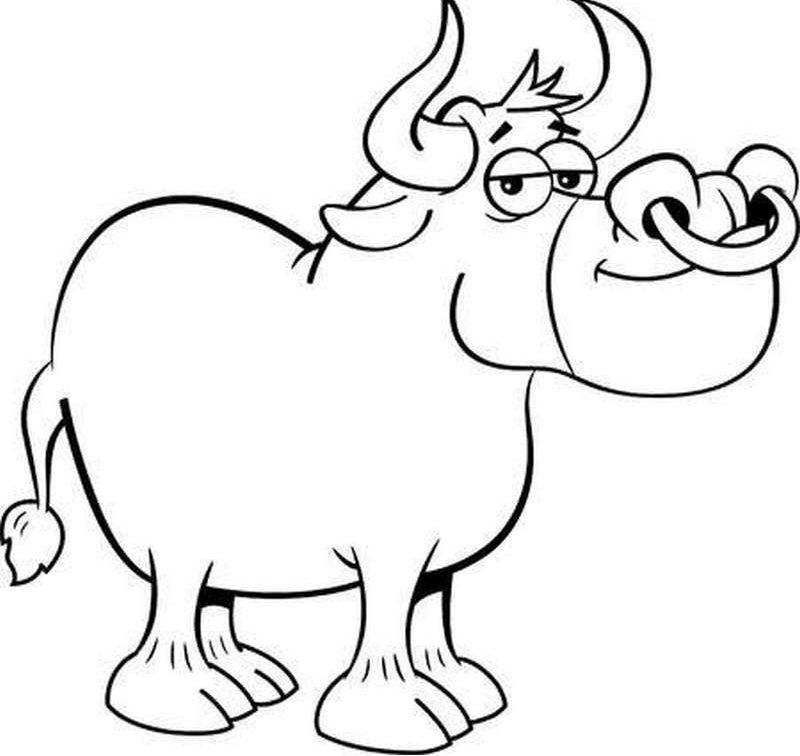 Раскраска бык