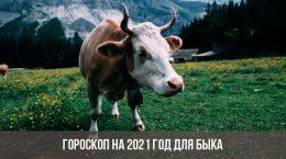 Гороскоп на 2021 год для Быка