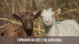Гороскоп на 2021 году для Коз
