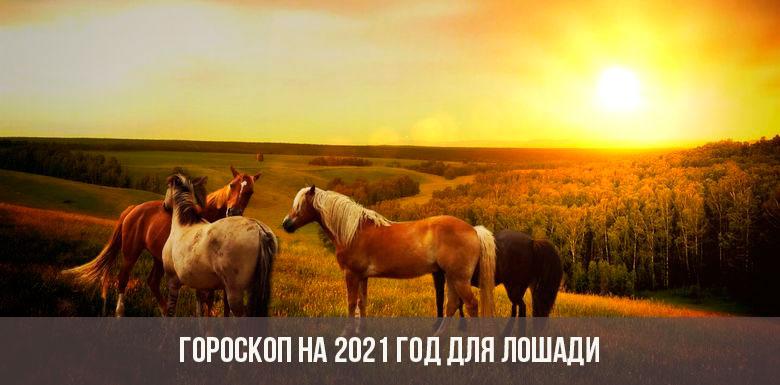 Гороскоп на 2021 год для Лошади