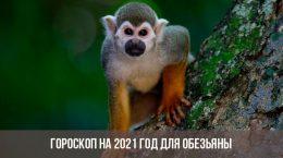 Гороскоп для Обезьяны на 2021 год