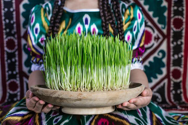 Зеленые ростки в праздник Навруз
