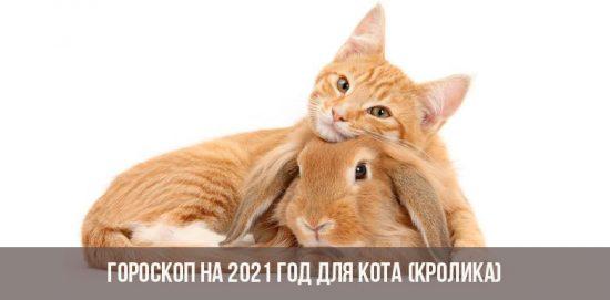 Гороскоп для Кролика (Кота)