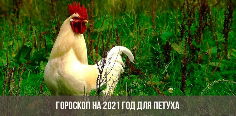 Гороскоп на 2021 год для Петуха