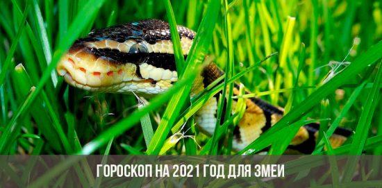 Гороскоп на 2021 год для Змеи