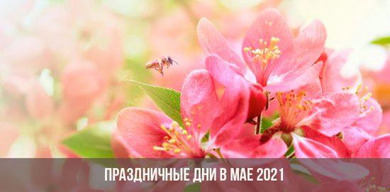 Праздничные дни в мае в 2021 году