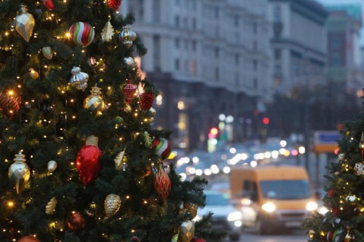 елка на фоне дороги