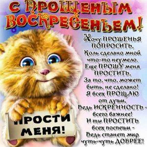 Открытка на Прощеное воскресенье 2021 с котиком