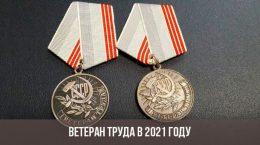 Медаль ветерана труда РФ