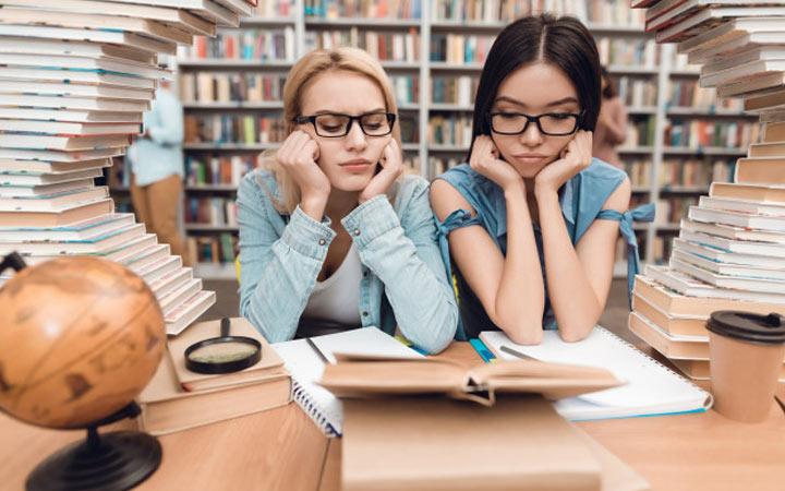 Подготовка к ЕГЭ 2021 по литературе