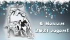 Картинки с белым металлическим быком на Новый 2021 год