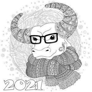 Картинка раскраска антистресс бык в очках