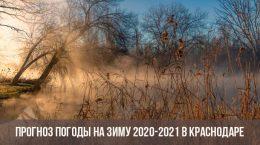 Прогноз погоды для Краснодара на зиму