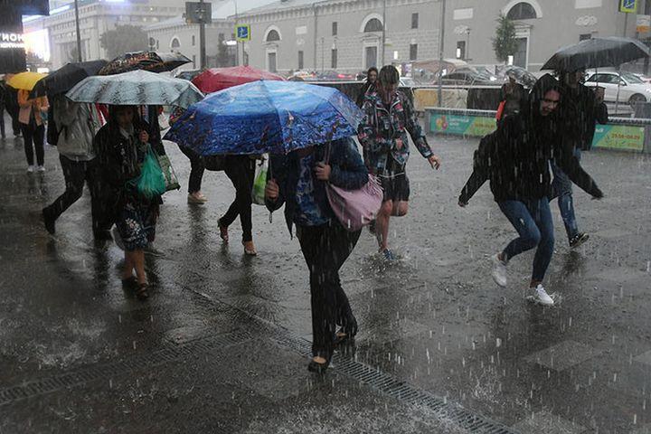 Зимний дождь в Москве