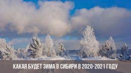 Зима в Сибири в 2021 году