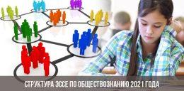 Структура эссе по обществознанию 2021 года