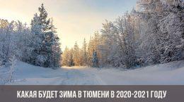Какая будет зима в Тюмени в 2020-2021 году