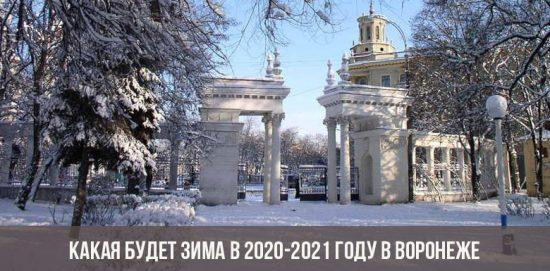 Какая будет зима в 2020-2021 году в Воронеже