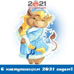 С наступающим 2021 годом Быка - самые оригинальные поздравления и открытки
