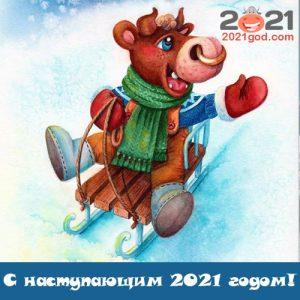 Новогодние открытки с Бычком и поздравления с наступающим 2021 годом