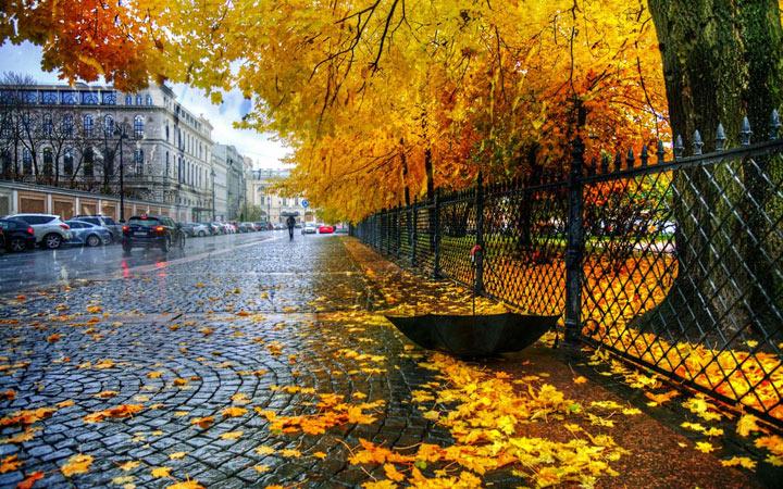 Осень 2021 года в России - прогнозы метеорологов