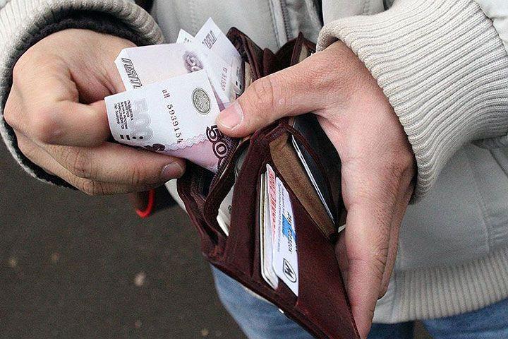 Рубли в кошелке